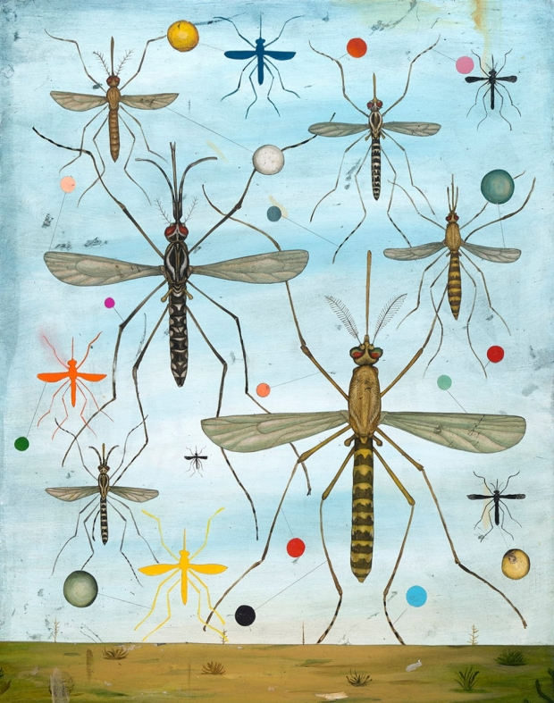Mosquito illustration by Jason Holley