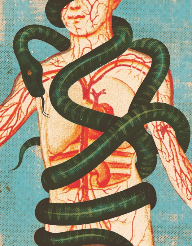 A person with a snake wrapped around them